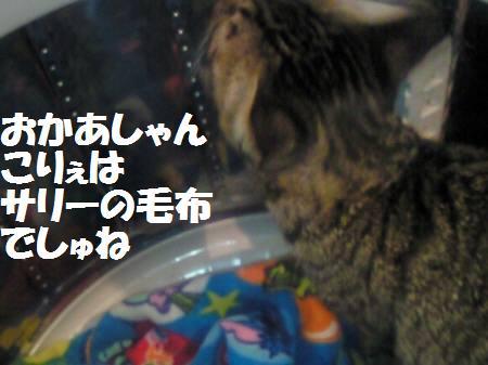 みなみ081126_2a