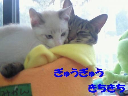 みなみサリー081210_1