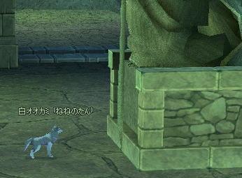 ねねの白オオカミ
