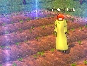 mabinogi_hatu_tomato1.jpg