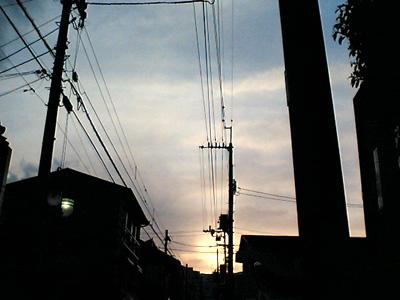 20060327.jpg