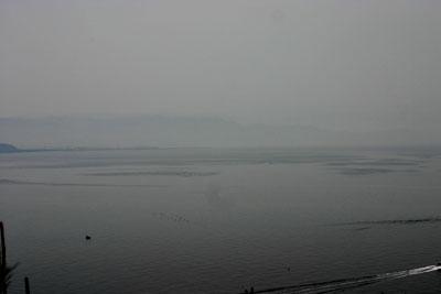 20060430.jpg