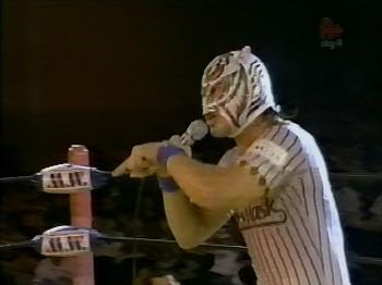 タイガースマスク2