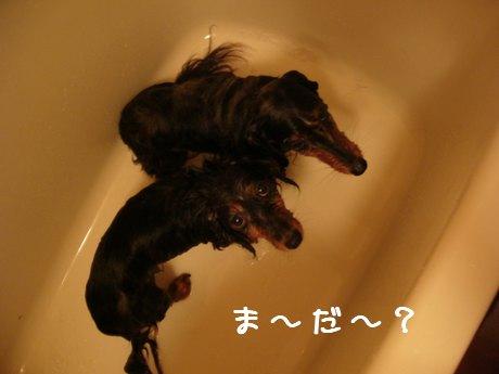 母娘お風呂3