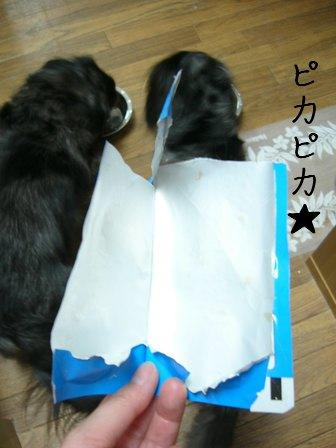 プレゼント?2