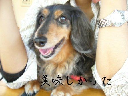 笑顔の母犬