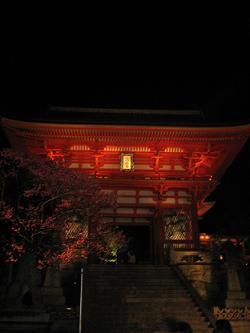 夜の清水寺。