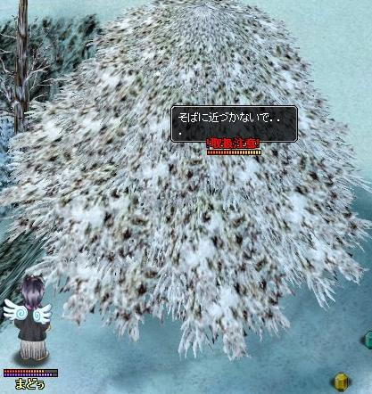 木の下の取扱注意
