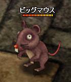 ビッグマウス_3-11-1