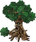 ふさふさの木