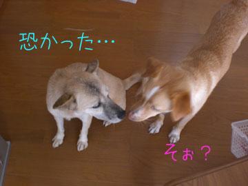 20080822-05.jpg