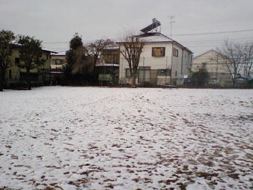 20090304-03.jpg