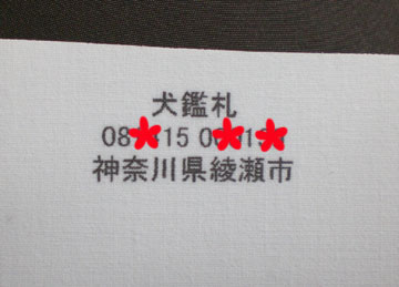 20090307-04.jpg