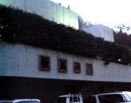 20051110kazuma.jpg