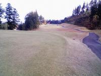 20071117-matuidamyougi-golf.jpg