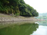 20080616-tsukui.jpg
