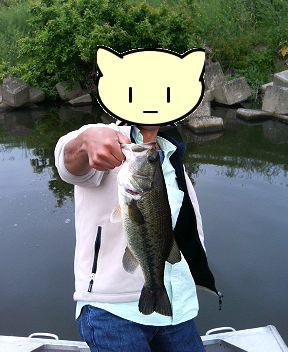 bass20050514a.jpg