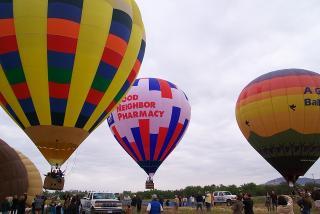 temecurafestival