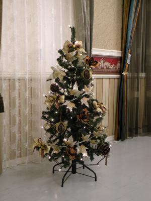 120cm tree brown