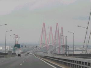 名古屋にゃん橋にゃん☆.:゚☆.:゚☆.:゚