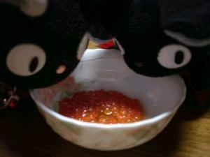 ふみゃ~☆.:゚☆.:゚☆.:゚