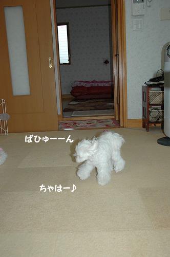 20090902-036.jpg