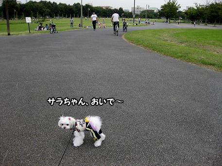 20090921-041.jpg