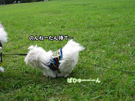 20090921-079.jpg
