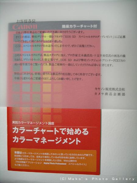 IMGP5595.jpg