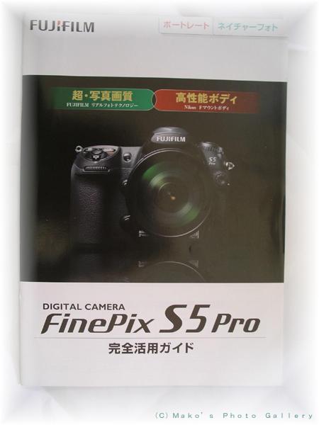 IMGP7965.jpg