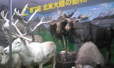 博物館02