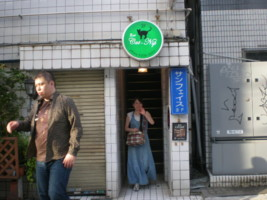 asagaya-catnip3.jpg