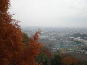 kofu-sakaoriwine7.jpg