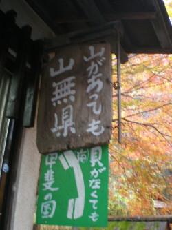 kofu-shosenkyo14.jpg