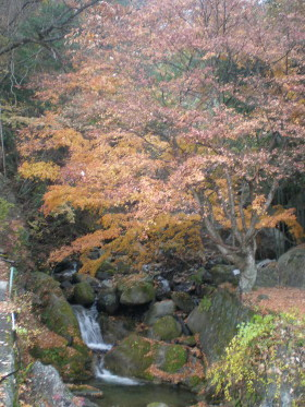 kofu-shosenkyo3.jpg