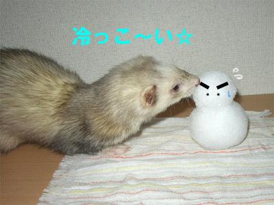 ゴン&雪だるま