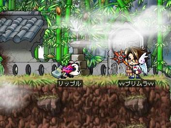 姫に籠るプリムラさん