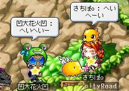 Maple☆0224