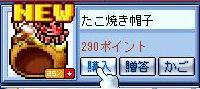 20081113 (2)