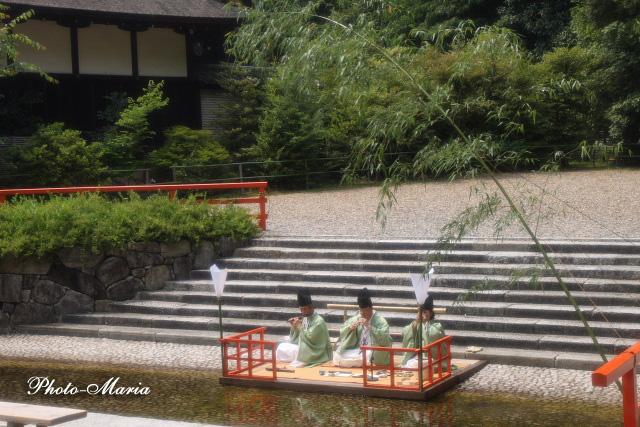 4-0906ajisai06.jpg