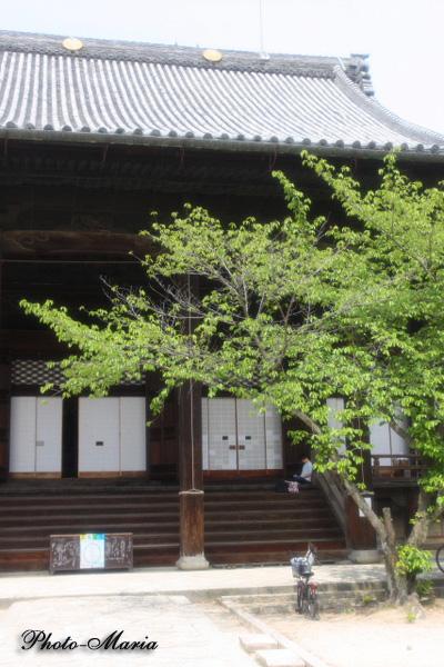 a4-0905chionji02.jpg