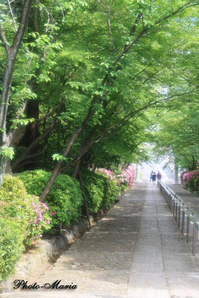 k3-0905yoshida10.jpg