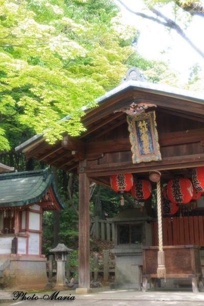 t3-0905yoshida16.jpg