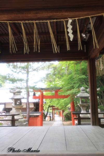 t4-905yoshida18.jpg