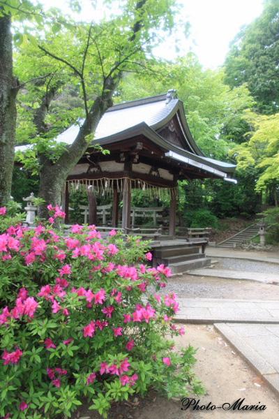 t5-0905yoshida17.jpg
