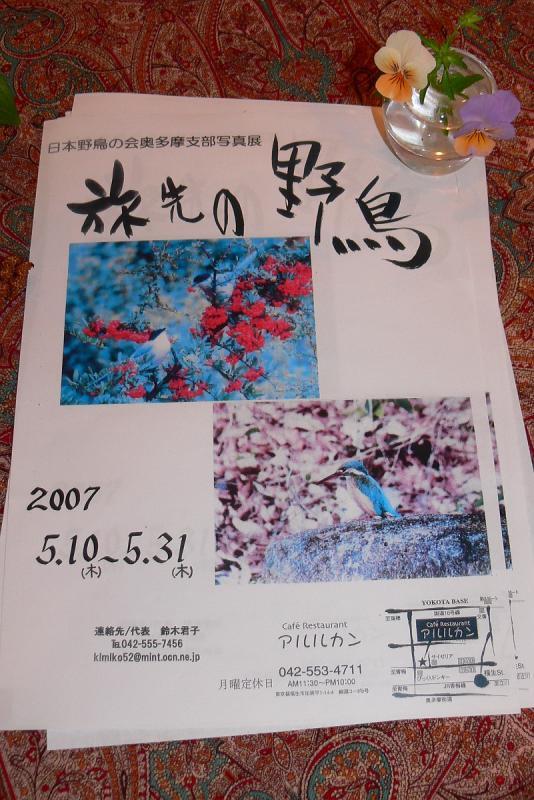 P1100146-t.jpg