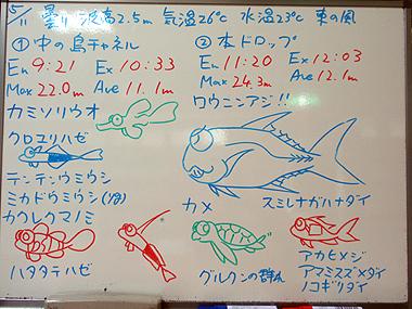 宮古島 090511ログデータ