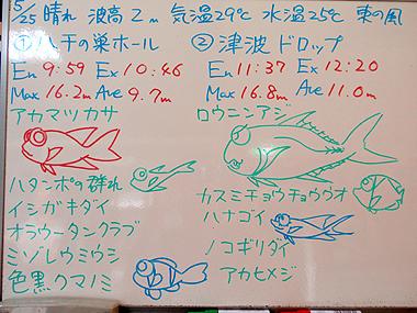 宮古島 ログデータ 2009/5/25