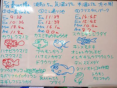 宮古島 ログデータ 2009/5/28