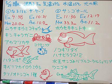 宮古島 ログデータ 2009/5/29